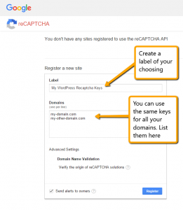 Google ReCaptcha Register Your Domains